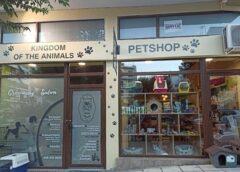 Kingdom of the Animals! Το απόλυτο Grooming saloon-Pet Shop στην Βέροια!